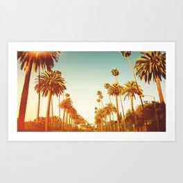 los angeles palms Art Print