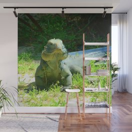 Iguana and Chill Wall Mural