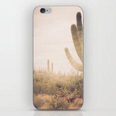 Saguaro Sunrise iPhone Skin