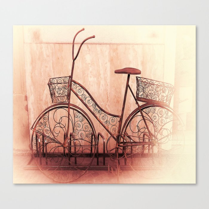 flower bycicle Canvas Print