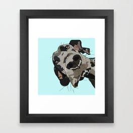 Great Dane In Your Face Framed Art Print
