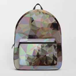 Geometric Hedgehog Backpack