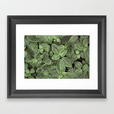 Just Green Framed Art Print
