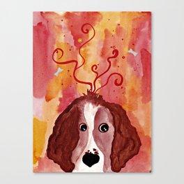 Red Springer Spaniel Canvas Print