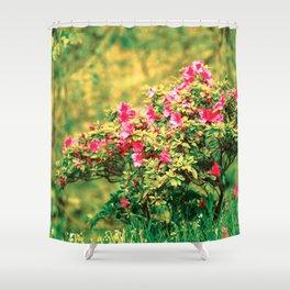 Azalea blooming Shower Curtain