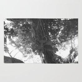 Arbor Fronde Rug