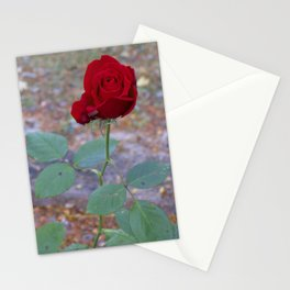 Blooming Day Stationery Cards