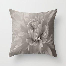 Monochrome chrysanthemum close-up Throw Pillow