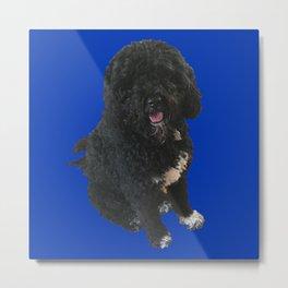 dog blue Metal Print