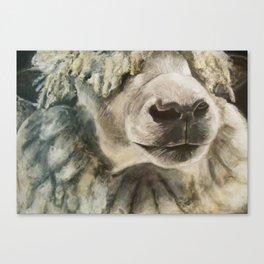 Nature Drawing: Sheep Canvas Print