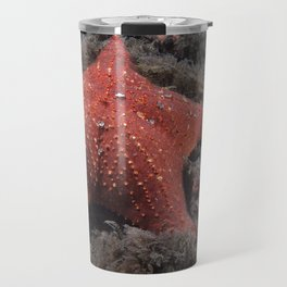 Starfish, (Sea Star)  Travel Mug