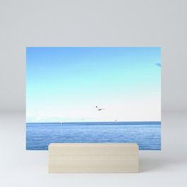 Lake Ontario: Seagulls & Sailboats Mini Art Print