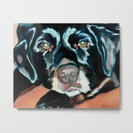 Daisy the Black Lab Dog Portrait Metal Print