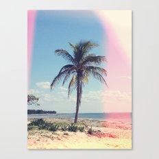 Palm Tree Light Leak Color Nature Photography Canvas Print