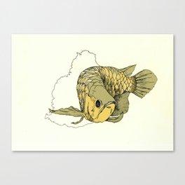 Gold Arowana Canvas Print