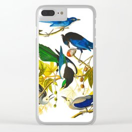 Yellow-billed Magpie Bird Clear iPhone Case