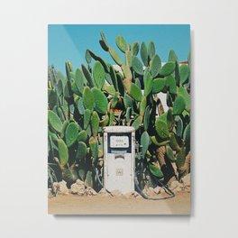 Cactus IV Metal Print