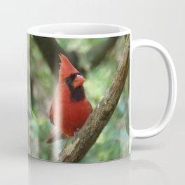 Northern Cardinal (male) Coffee Mug