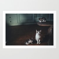 kittens Art Prints featuring kittens by malbork
