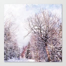 winter trees in sunlight Canvas Print