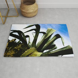 Large Giant Green Aloe Plant with Bright Blue Sky Rug