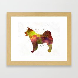 American Akita in watercolor Framed Art Print