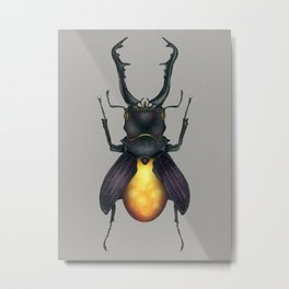 Amber Beetle Metal Print