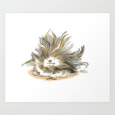 Pile of Fluff, out for a walk Art Print