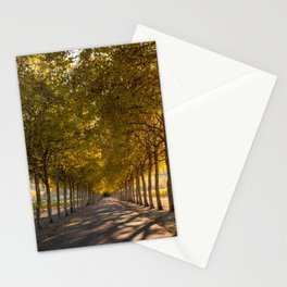 Napa Valley Tree Lined Path, Fall Colors, Autumn, Sunshine, California Photography, Thanksgiving Art Stationery Cards