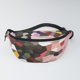 Evolution Geometric Shapes Fanny Pack