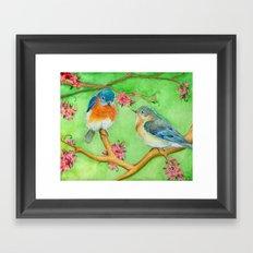Bluebirds Framed Art Print