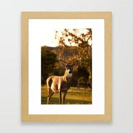 Geometric Deer Framed Art Print