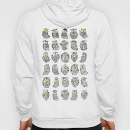 Sleepy Owls Hoody