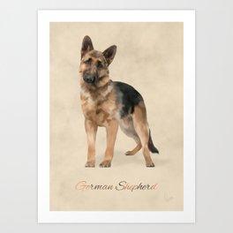German Shepherd Art Print