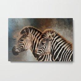 Plains Zebras Metal Print