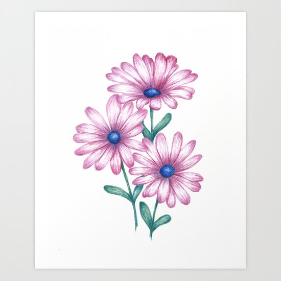 Flower drawing daisy pink print botanical art art print by flower drawing daisy pink print botanical art art print by josiemaedesign society6 mightylinksfo Images