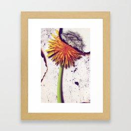 Death Of Beauty Framed Art Print