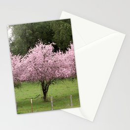 Cherry Blossoms on Mount Hamilton Stationery Cards