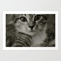 Lucy Watches Art Print