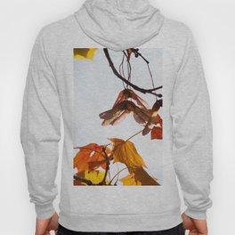 Autumn Sonata I Hoody