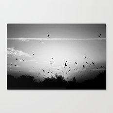 Migrating birds #02 Canvas Print