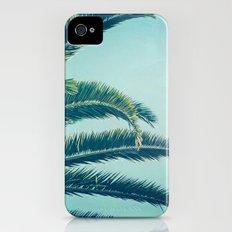 California Palm  iPhone (4, 4s) Slim Case