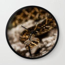 Rattlesnake-III Wall Clock