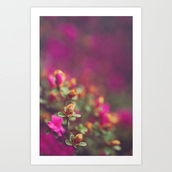 The Pink Orange Art Print
