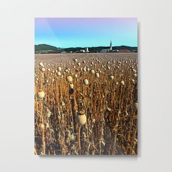 Poppy fields with a sunburn Metal Print