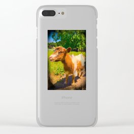Nigerian Dwarf Goat Clear iPhone Case