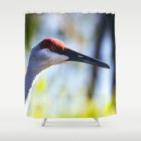 crane Shower Curtains featuring Sandhill Crane by Roger Wedegis
