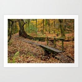 Roddlesworth Wood in the Autum Art Print
