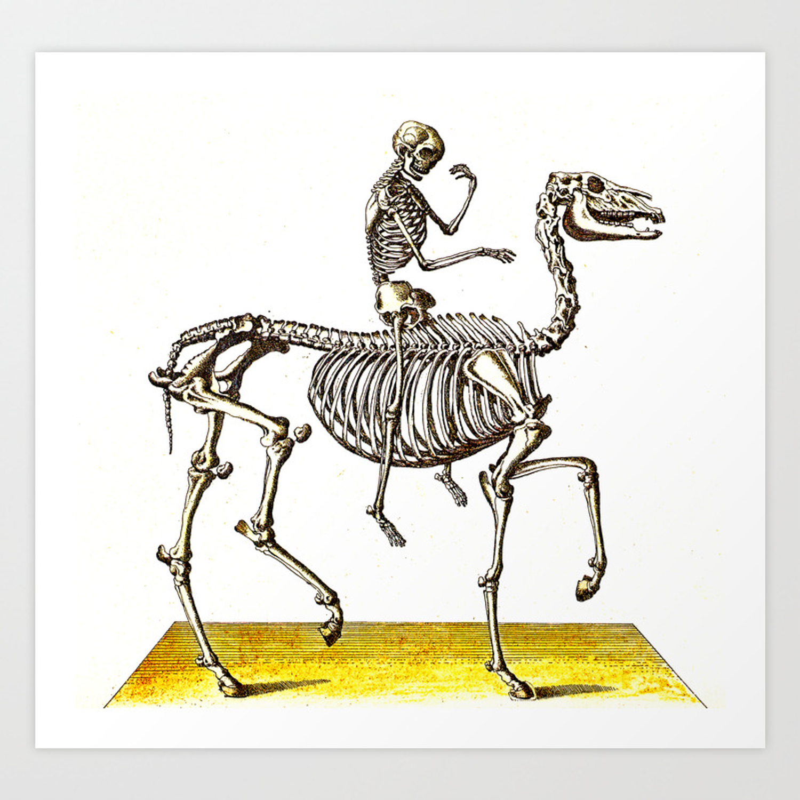 Horse Skeleton Rider Art Print By Ouijawedge Society6
