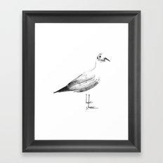 Gaviota Framed Art Print
